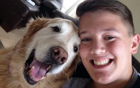 Cameron McKnight's Dog Business