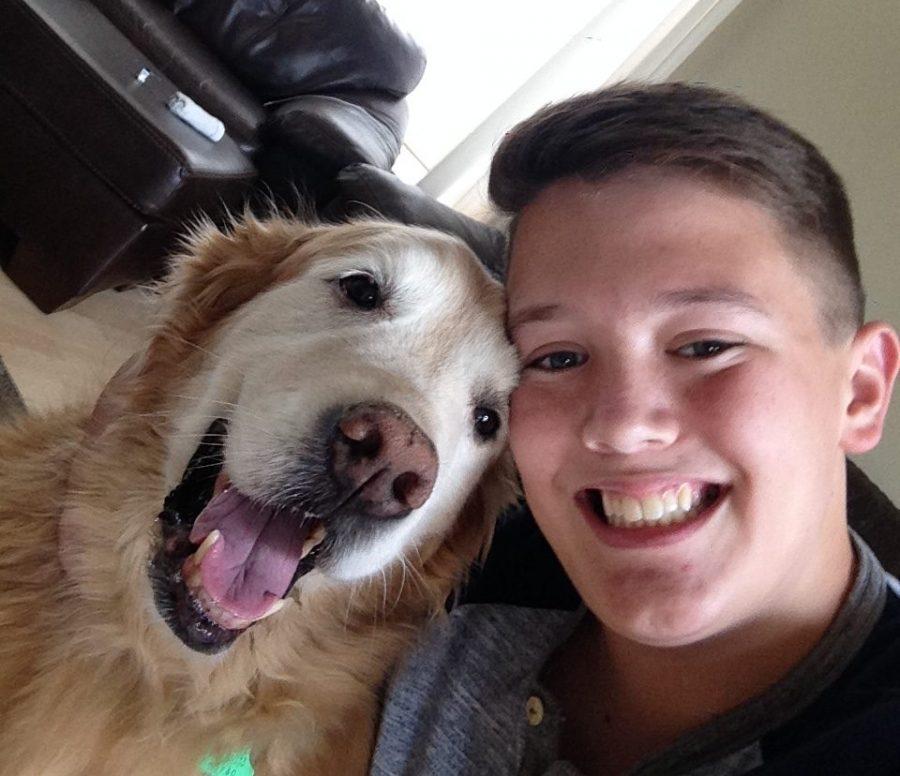 Cameron McKnights Dog Business