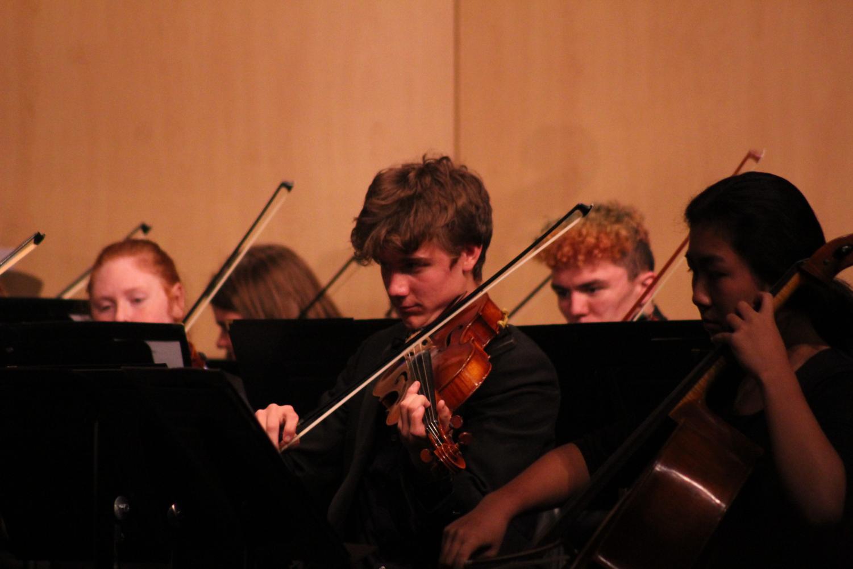 Garrett Roggy, junior, plays viola in Liberty's orchestra.
