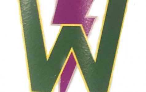 The team logo for the Liberty and West High swim team.