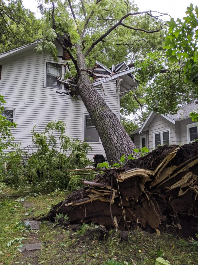 A large tree that fell onto a home in Iowa City, IA.