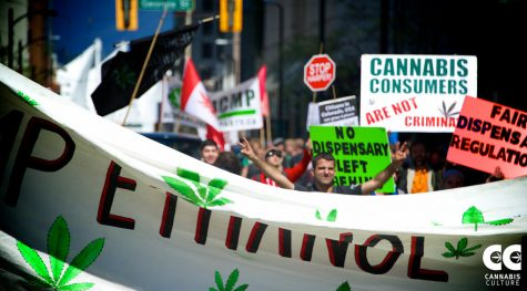 """""""Vancouver Global Marijuana March 2015 - by Danny Kresnyak"""" by Cannabis Culture is licensed with CC BY 2.0"""